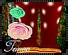 T » Leg Roses