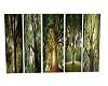 5 Tree pictures