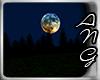 !A Night Open Terrain