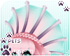 [Pets] Jura | crest v1