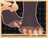 Maxie | Feet