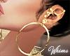 Kitten Gold Earrings