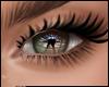 Military Eyes