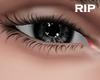 R. eXIP v2