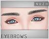 [\] #M.02-1 Eyebrows