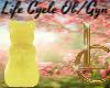 LC:  Lemon Prego Pop
