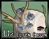 ♀♂ Elven Crown