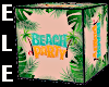 BEACH BOX with POSES