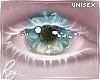Sea Bream Lotus Eyes