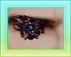 Stefano ` Eye