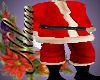 N] Santa Claus Costume