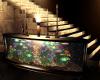 (NVP) Aquarium