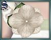 [S]Add-On Flower 04