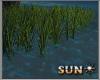 !SR! Animated Grass