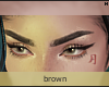 Domesticity Brows \ Brn