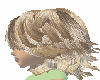 1 gingermist hair