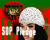 F: Pledge Hair