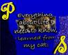 Everything Cat - Dk Blu