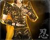 忍 Divine Fist Aura