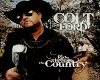 Colt Ford Never thought