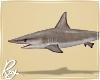 Realistic Shark