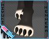 Chupa .paws
