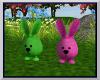 BRS Bouncing Bunnies
