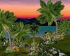 # Island Paradise #