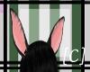 [C]Onix bunny ears