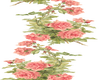Peach Rose Bud-2