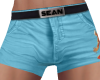 NV Sean Shorts