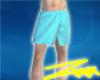 [Z]Short Towel(blue2)