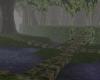 (T)Deep Forbiden Forest