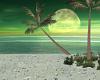 Sensations Beach