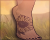 P| sunflower