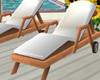 Hollywood Beach Lounger