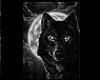 NightWolff