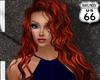 SD Dottie Phoenix