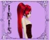 iris red red