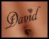 *K* David Tatto