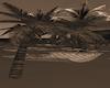 BeachHam