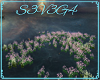 Flower spring field anim