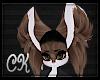 CK-Luca-Ears 5