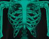 Skeleton v4