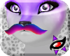 K~ Drv. Katt Mustache