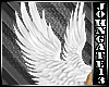 White Angelic Wings m/f