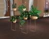 LH Indoor Plant Set