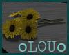 .L. Cut Sunflowers