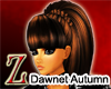 [Z]Dawnet Autumn