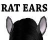 AC*Dark grey rat ears